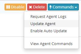 Updating Agent from Netsparker Enterprise
