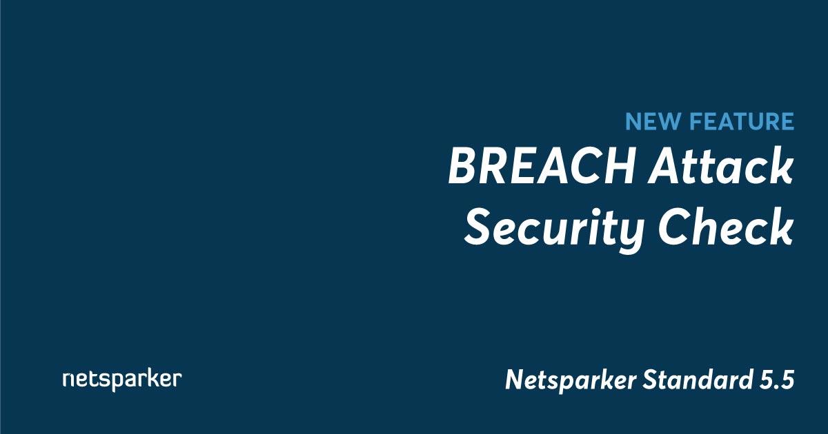 BREACH Attack Security Check